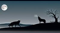 Hạt Giống Tâm Hồn: Những con sói trong tâm hồn