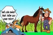 Đọc truyện cười dân gian: Ngựa chết nhiều quá